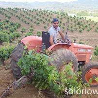 Tractor work