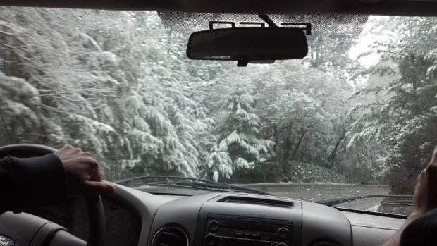 snow feb 2014