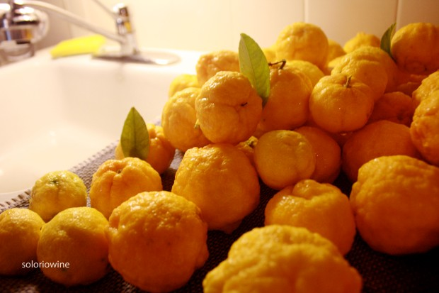 washinglemons
