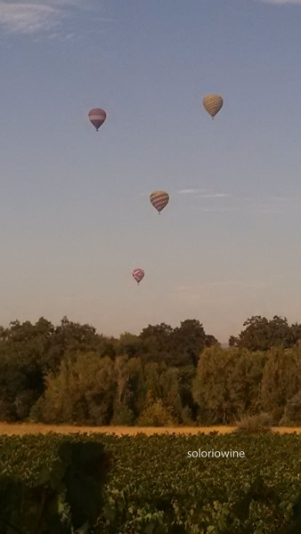 balloons napa