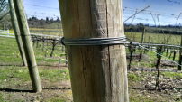 wire around wood end post
